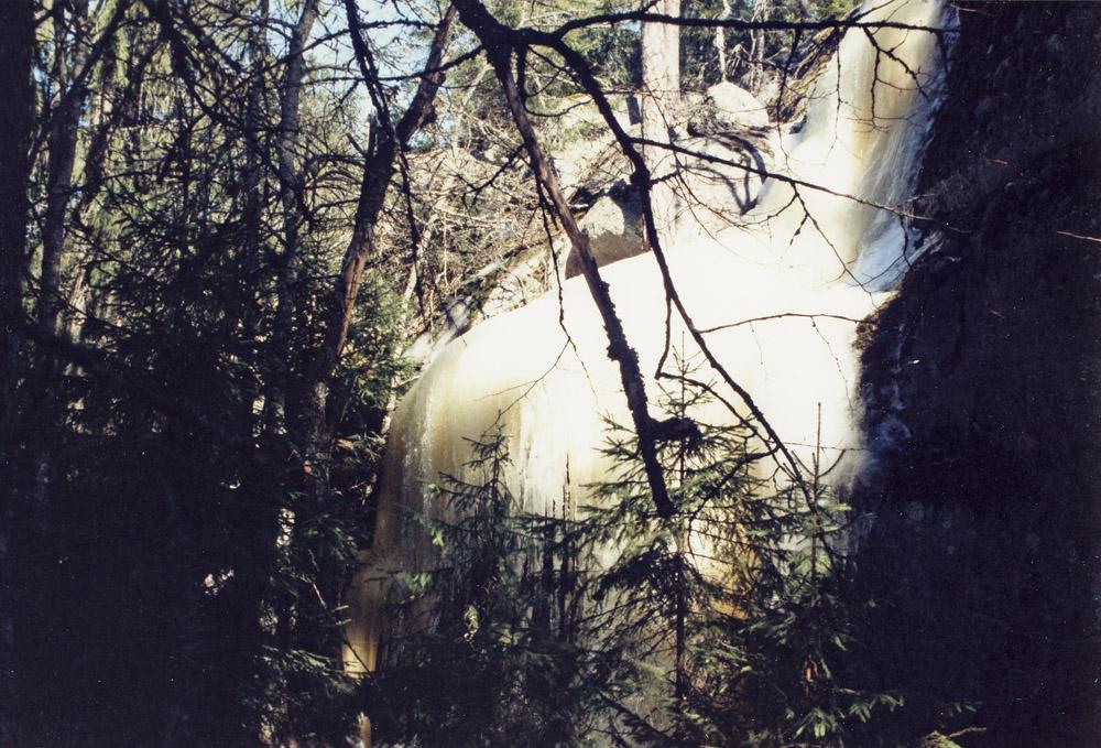 Askolassa hiidenkirnut jäätyvät talvella näyttäviksi jääveistoksiksi